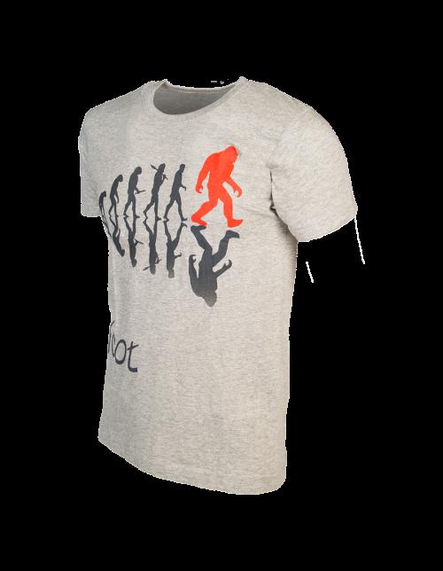 T-shirt Evolution grey
